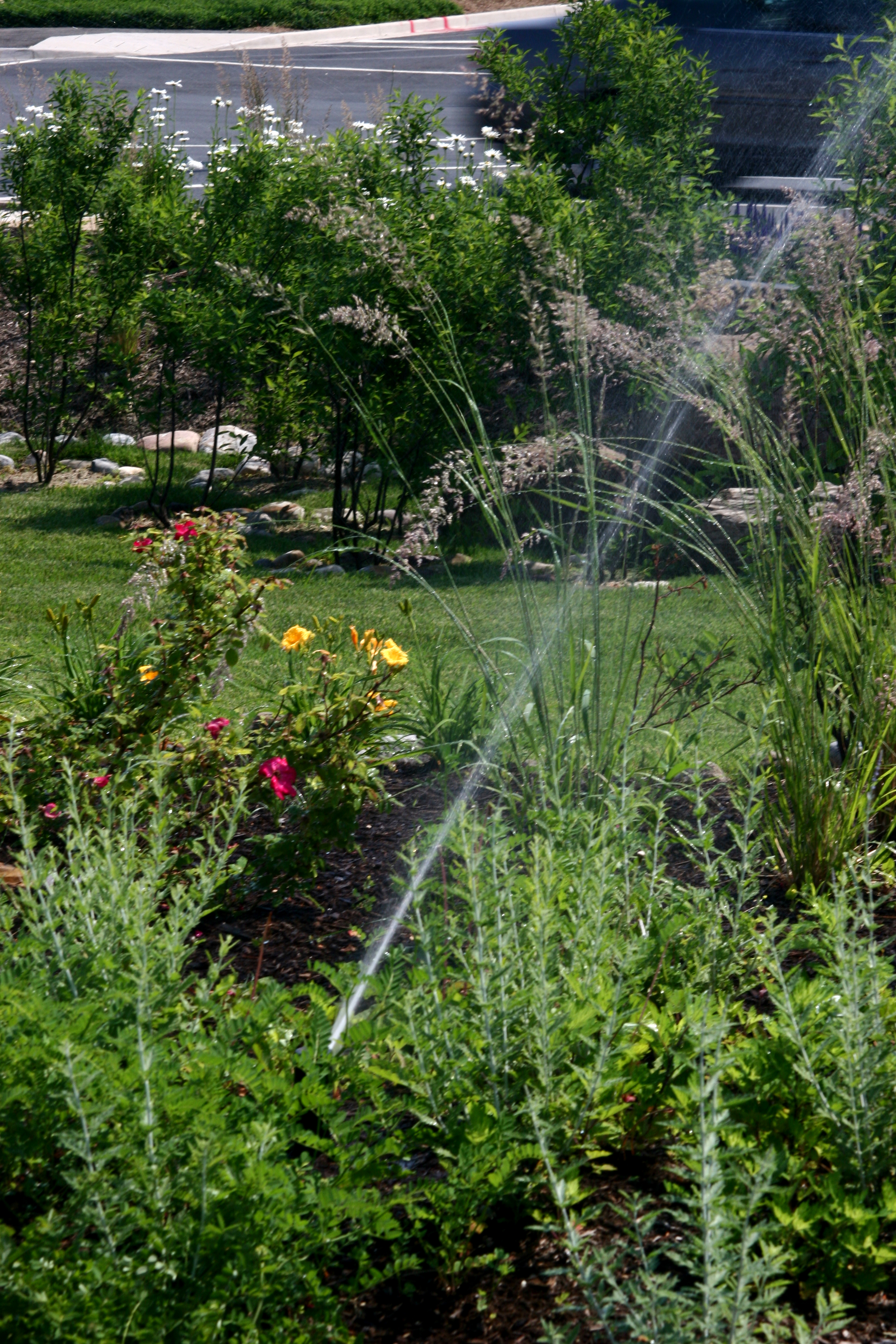 commercial landscape irrigation in md and va r t mackenzie